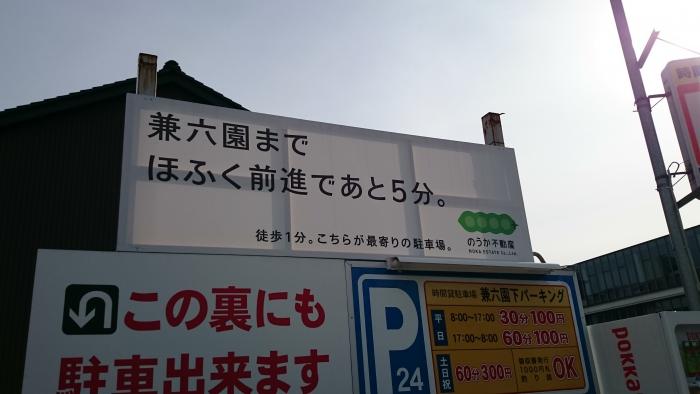 DSC_0558